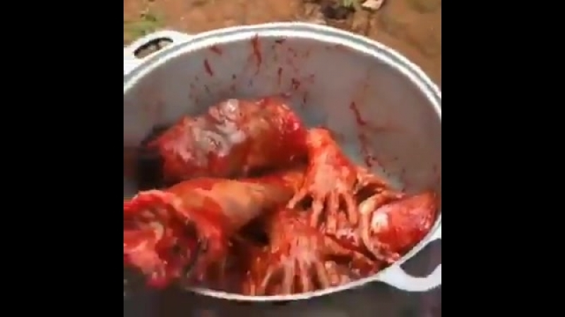 Essenszeit Eine afrikanische Köstlichkeit aus afrikanischen Ländern direkt auf den Tisch demnächst auch in deiner Umgebung