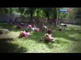 «Я просто хочу жить» - Очень трогательная песня о детях Донбасса