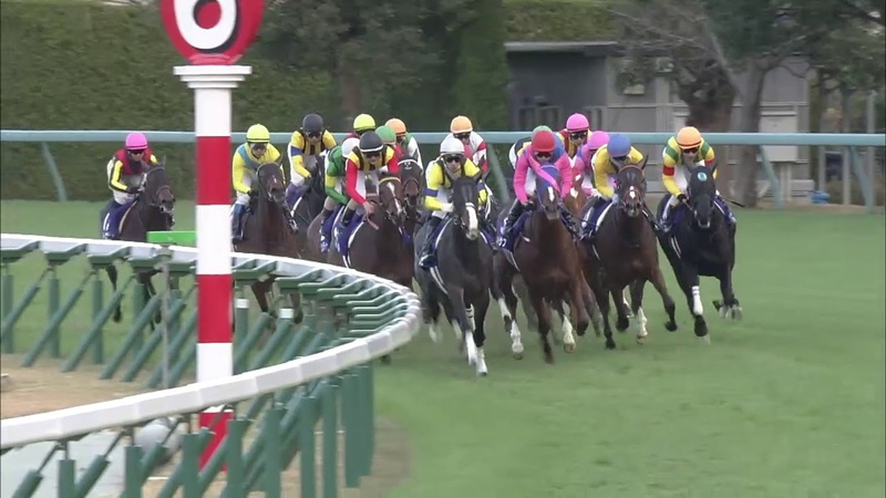 2018 Hanshin Juvenile Fillies (G1)