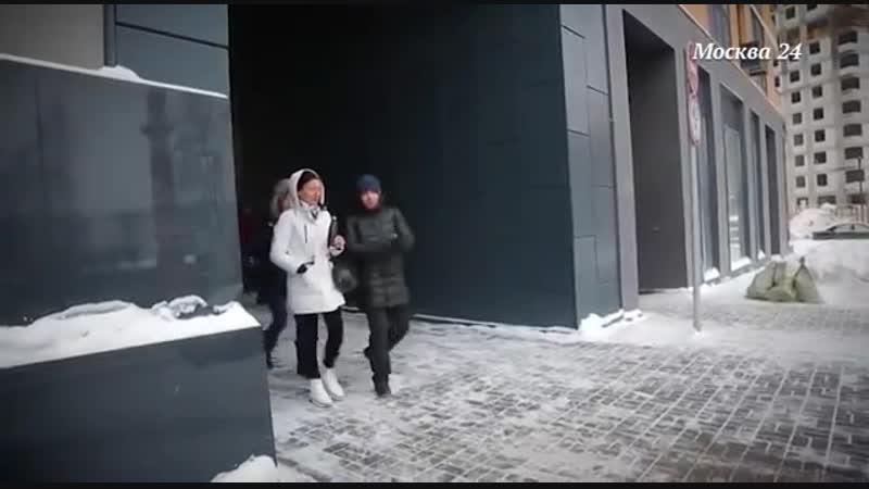 Спорная территория собака в городе Москва 24
