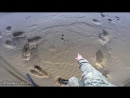 Охота на зайца в пустыне. Охота на мотоцикле. Иж-43.mp4