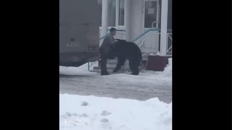 Тоже надо сегодня своего медведя выгулять.mp4 nj;t yflj ctujlyz cdjtuj vtldtlz dsuekznm.mp4