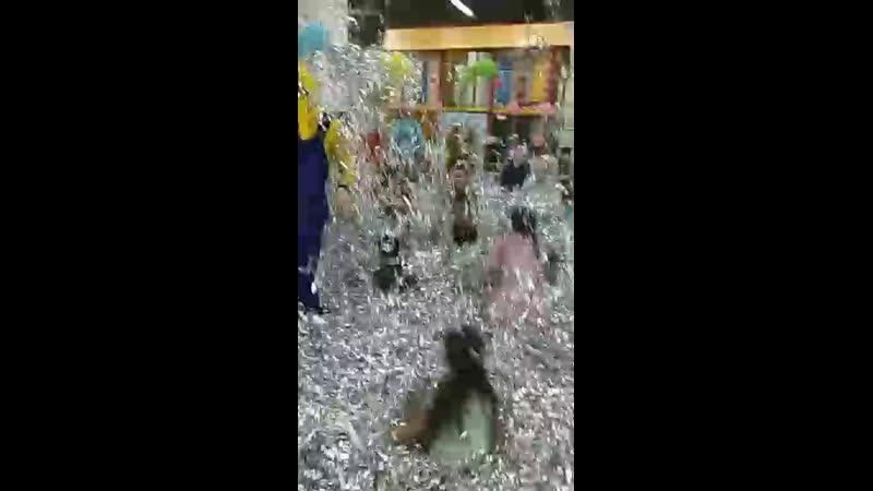 Серебряное шоу от агенства детских праздников Хамелеон