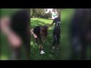 Эта девочка - ужас ходячий! : на Урале школьница избила сверстницу из-за парня