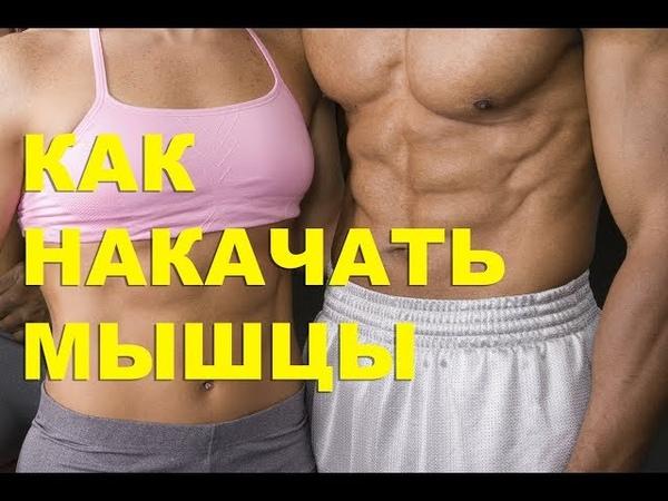 Как накачать мышцы и построить красивую фигуру. Здоровый спорт