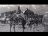 _Dorothy Brooke and the Fight to Save Cairo's Lost War Horses__TubeID.Co.mp4