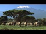 Килиманджаро - самая высокая гора в Африке