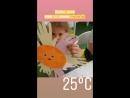 Лето в детском саду SUN SCHOOL