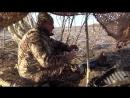 2018 - Охота на гуся весна 21 апреля