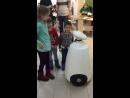 Интерактивный робот от компании Гефест Проекция в Йошкар Оле в рамках ТПП на мероприятии «Дети наше будущее»!
