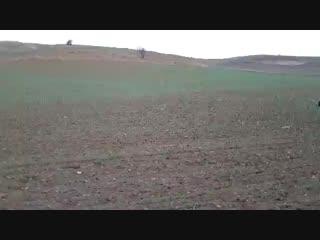 Kırıkkale'den Vurgun & Ankara'dan Beto (LİDER KANGAL)