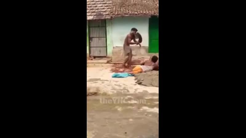 В мире животных   Парняга пытался убить тесаком мужчину-любовника его жены