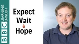 Hope vs expect vs wait What's the difference - English In A Minute