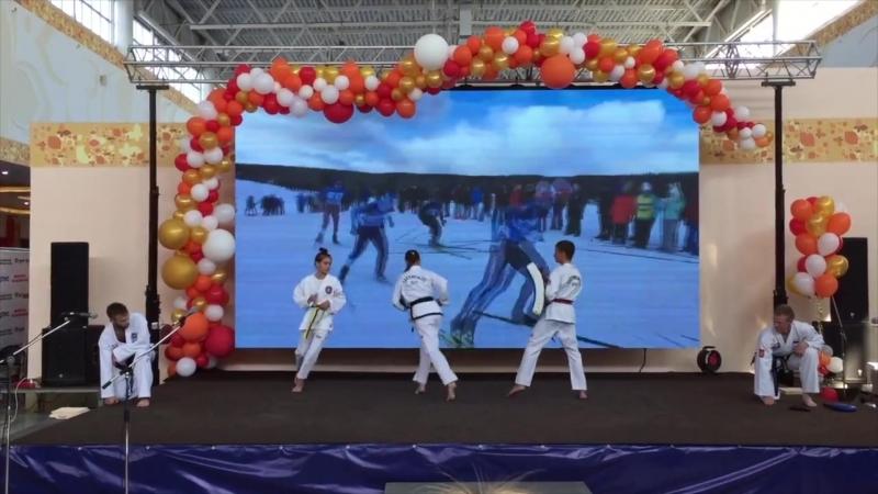 Школа боевых искусств Анатолия Чиканчи на Коми ВНДХ