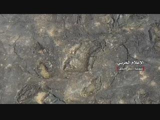❗️Сирийская Арабская Армия контролирует самую высокую точку вулканического плато ас-Сафа ★ Основная масса боевиков ИГ, покинула