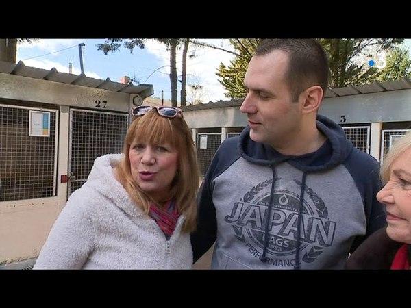 Michèle Torr et Stone au chevet de chiens abandonnés près de Caen