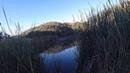 Bass Fishing Henry W. Coe State Park - Kelly Lake 08.08.2016