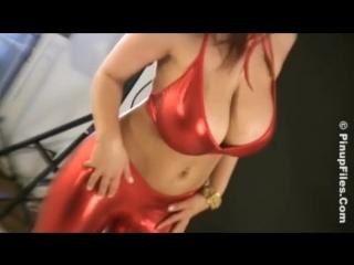 Denise Milani non-nude erotic super model big tits sexy girl Playboy эротика большие сиськи 6 размер - PF Armando Pinup 1
