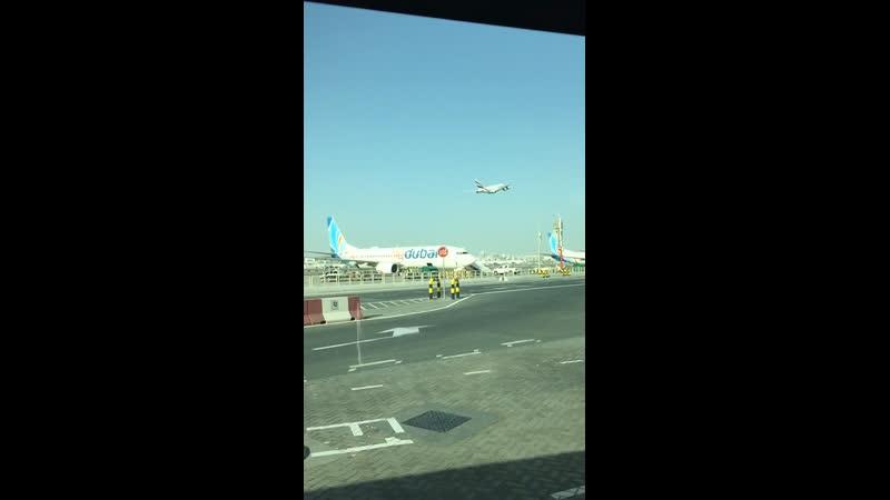 Dubai ari port