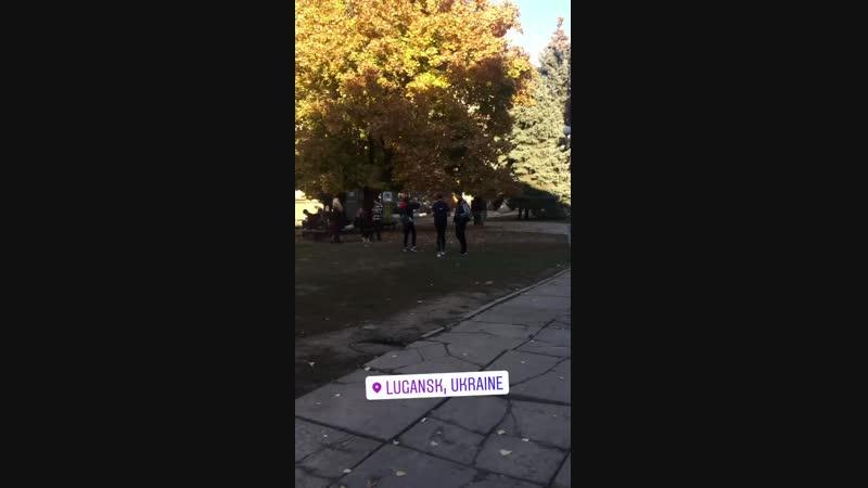 Flex dlya daynov