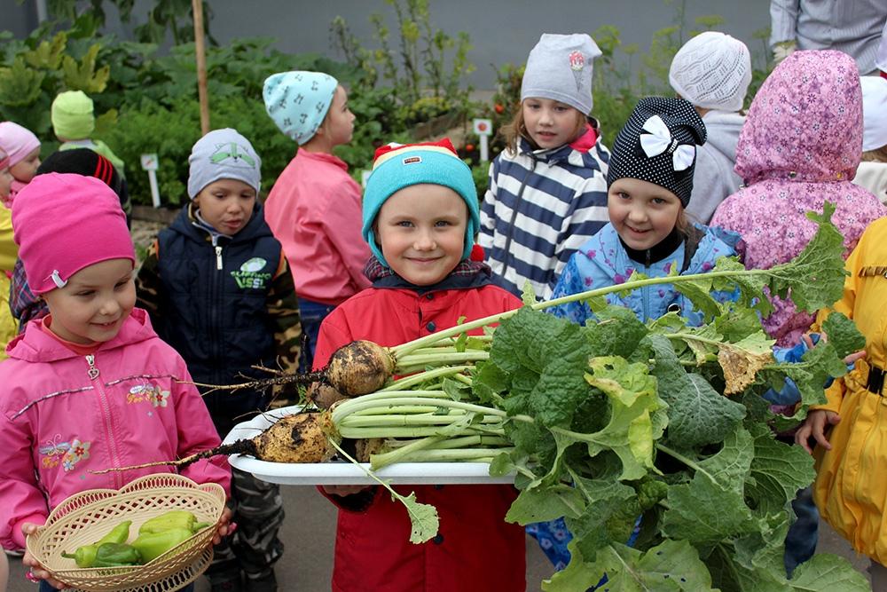отдел внестационарного обслуживания, Донецкая республиканская библиотека для детей, осенний праздник урожая,  садик 293