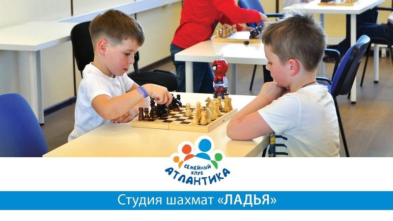 Студия шахмат «Ладья»