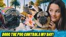 Doug the Pug Controls My Day Annie LeBlanc