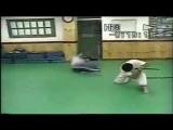 Джин днун кван подготовка показательных выступлений с мачете