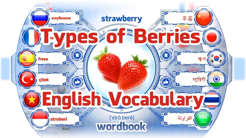 Lesson: Types of Berries | Learn English Vocabulary With Pictures | Word Book
