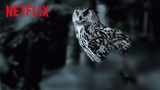 The Staircase The Owl Theory Netflix