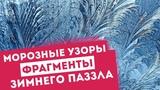 Морозные узоры фрагменты зимнего паззла ТелеТрейд-Торговая неделя с Петром Пушкаревым от 28.01.2018