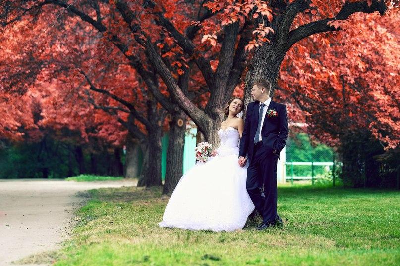 аллеями начинающие фотографы на свадьбу челябинск наблюдатели вновь