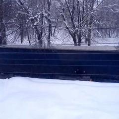 """Александр Милевский on Instagram: """"Перед офисом образовалась пробка. Я думал фура сломалась. Оказал"""
