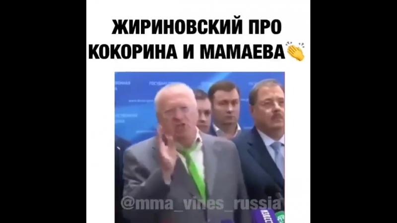 Mma_vines_russia_20181013005102.mp4