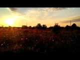 Soulpower of sun in Chernobyl Exclusion zone