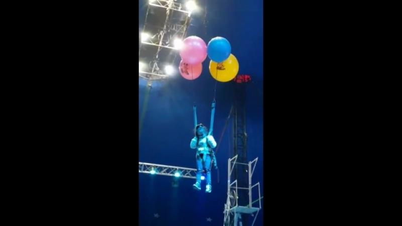 Даша под куполом цирка