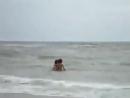 Выбросило дельфина