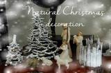 DIY NATURAL CHRISTMAS NATIVITY SCENE decoration Ideas