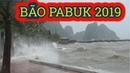 NÓNG: BÃO PABUK 2019 tiến thẳng Cà Mau, gây giông lốc ở các tỉnh Nam Bộ - News Tube