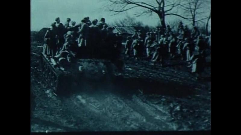 13. Великая Отечественная война – Освобождение Украины