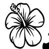 Студия флористики и дизайна  Alise Flowers
