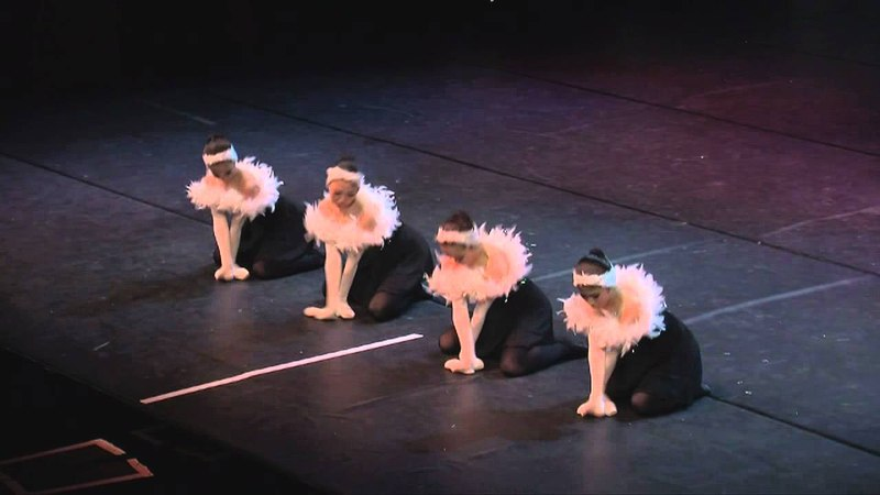 Dance World made in Takane, Japan. Swan Lake
