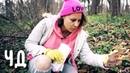 СТРАННЫЙ ЛЕС В ЗАБРОШЕННОЙ УСАДЬБЕ Квест Чужой Дневник Anny Magic
