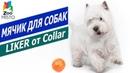 Мячик для собак Лайкер Обзор мячика Лайкер для собак Колар Collar Liker Ball fore dogs review