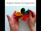 Цветы оригами для начинающих.