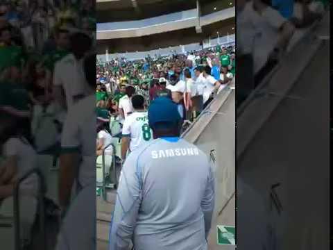 Torcedores do Palmeiras são expulsos do estádio após serem flagrados SE BEIJANDO