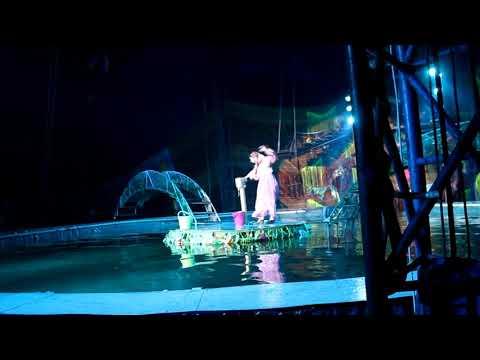 Московский Цирк на воде в Балаково | Ребенок в цирке первый раз | Наталья Бубнова