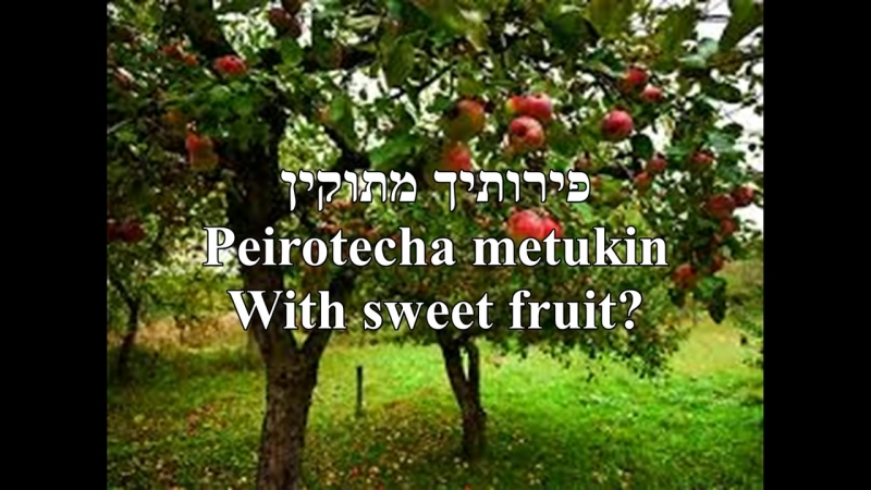 Ilan-Tree-Motty Steinmetz-HebrewEnglish Lyrics (PICTURE-TEXT ONLY)-אילן-מוטי שטיינמץ