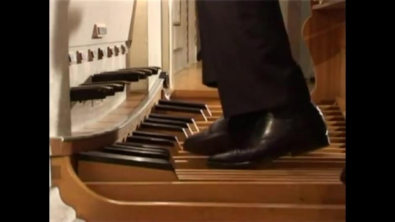 564 J. S. Bach - Toccata, Adagio and Fugue in C major, BWV 564 - Enrico Viccardi