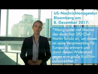 Alice Weidel - Warum ließ sie Thorsten Schulte nach diesem Video fallen - Michael Sohl MIRROR -